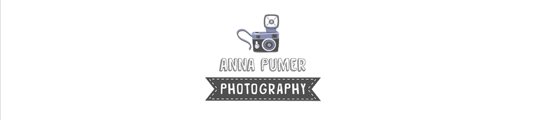 Super Awesome Wedding Photographer | Anna Pumer Photography logo